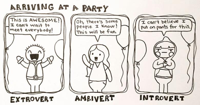 introvert zabava