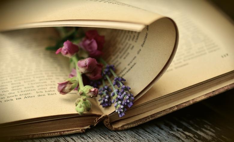 knjiga-čitanje-2