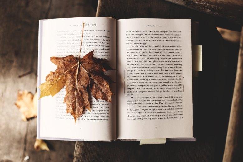 Knjiga-orbis-jesen