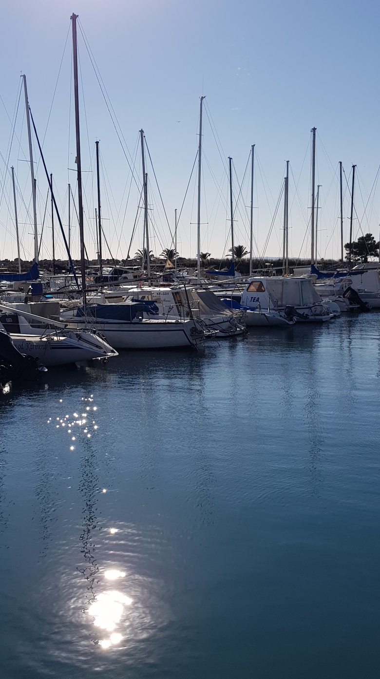 marina-jahta-brodovi