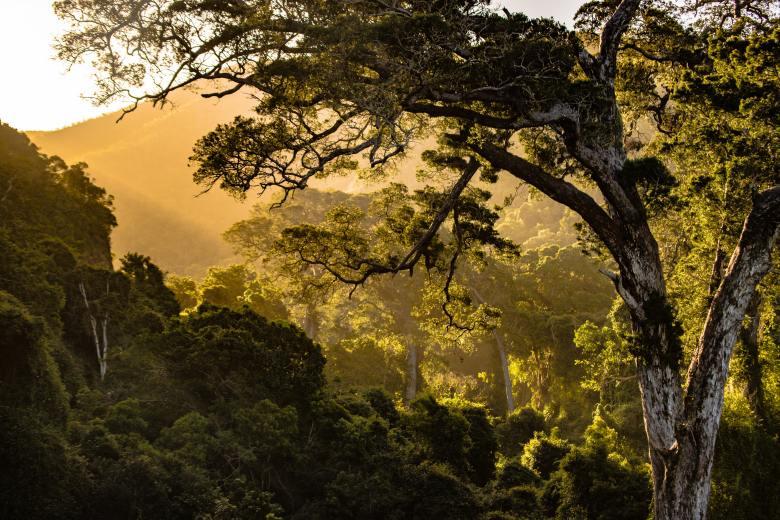 zdravlje-hiking-priroda-fotografija